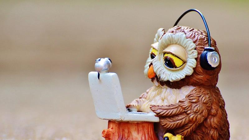 フクロウとパソコン
